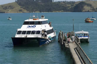 360 Discovery Ferry